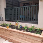Custom ModBOX raised garden bed in a corner of a courtyard